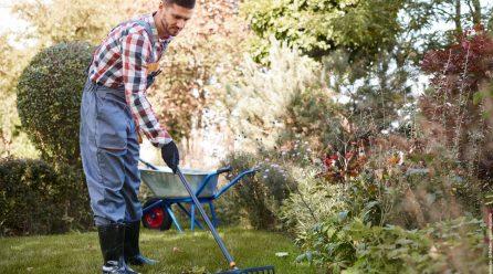 Garten planen – Beispiele